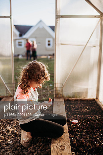 Young girl sitting in backyard greenhouse and looking at seeds in hand - p1166m2201129 by Cavan Images