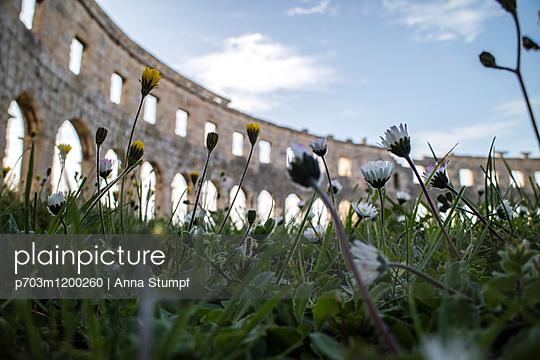 p703m1200260 by Anna Stumpf