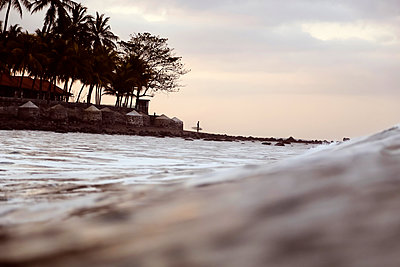 Shore with palm trees at sunset, Bali - p1108m2210783 by trubavin