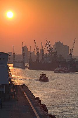 Hamburger Hafen im Morgennebel - p792m2134316 von Nico Vincent