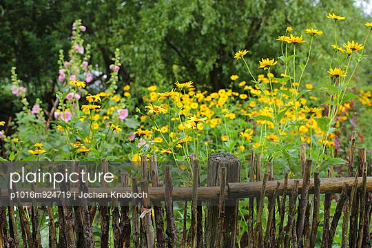 Bauerngarten - p1016m924719 von Jochen Knobloch
