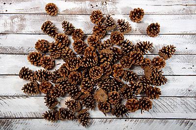 Kiefernzapfen - p451m1425212 von Anja Weber-Decker