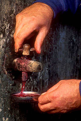 Hands pulling red wine barrel - p813m924532 by B.Jaubert