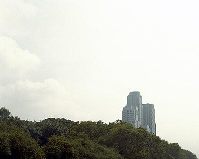 Wolkenkratzer zwischen den Bäumen - p1409m1466035 von margaret dearing