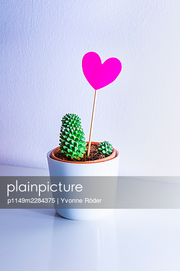 Cactus and heart - p1149m2284375 by Yvonne Röder