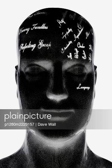 Phrenologie, Kopf - p1280m2229157 von Dave Wall