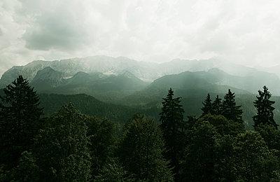 Wettersteinwand - p1599m2168910 von Sandra Bergemann