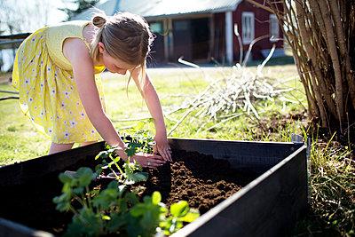 Girl gardening - p312m1495596 by Fredrik Ludvigsson