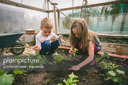 Geschwister bei der Gartenarbeit - p1315m2018448 von Wavebreak