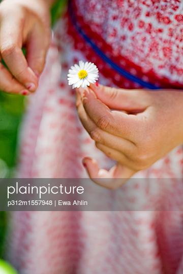 plainpicture | Photo library for authentic images - plainpicture p312m1557948 - Girl holding daisy flower - plainpicture/Johner/Ewa Ahlin