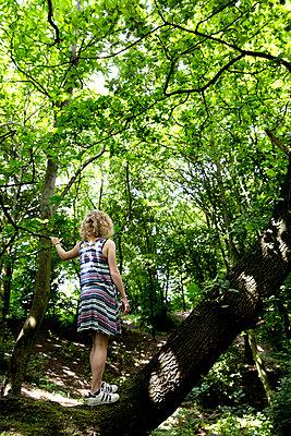 Mädchen im Wald - Rückansicht - p1212m1152980 von harry + lidy