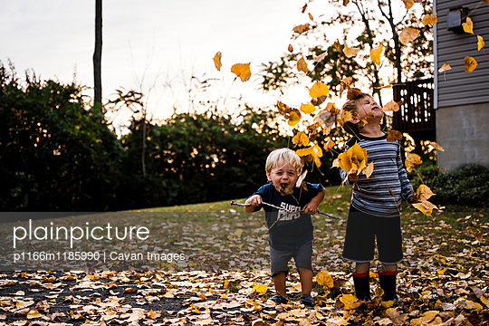Cheerful brothers playing with maple leaves in backyard during autumn - p1166m1185990 by Cavan Images