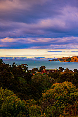 Summer cottage on the coast, New Zealand - p1455m2204853 by Ingmar Wein