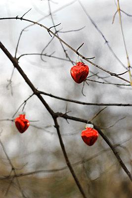 Weihnachtsdekoration     - p450m1092503 von Hanka Steidle