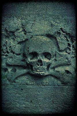 Skull - p1028m1136711 by Jean Marmeisse
