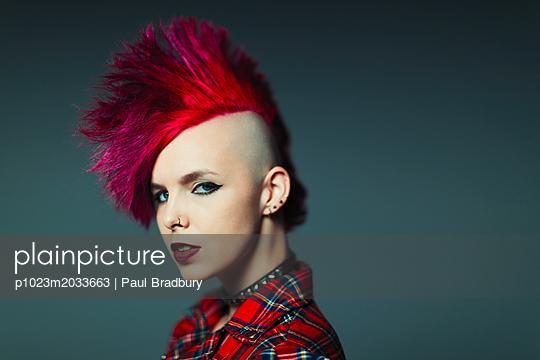 p1023m2033663 von Paul Bradbury