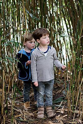 Kinder auf Entdeckungstour - p1308m2057143 von felice douglas