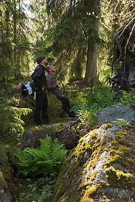 Man hiking in Tofsingdalen Nature Reserve in Sweden - p352m2120258 by Gustaf Emanuelsson