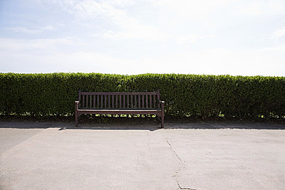 Bench and hedge on promenade - p9242474f by Image Source
