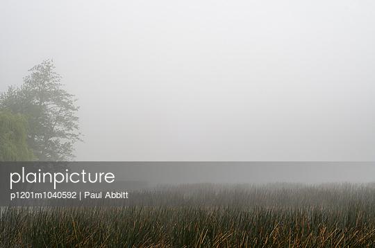 Waikato, Neuseeland - p1201m1040592 von Paul Abbitt