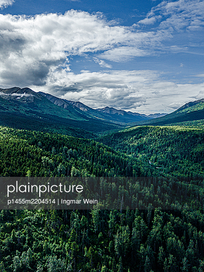 Woodland with mountain range in the background - p1455m2204514 by Ingmar Wein