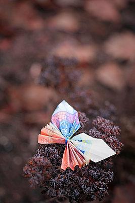 Butterfly, folded money - p715m2173238 by Marina Biederbick