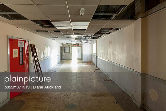 p855m971919 von Diane Auckland