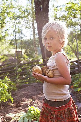 Girl holding potatoes - p312m1139763 by Wenblad-Nuhma