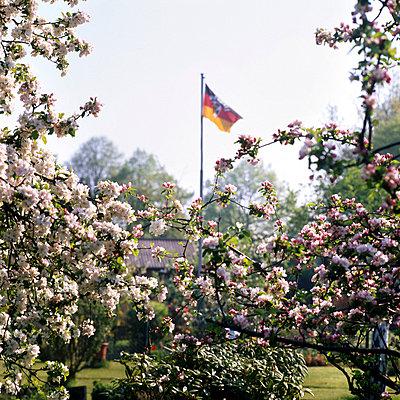 Deutschlandfahne in Kleingarten, Hamburg - p9792687 von Otto