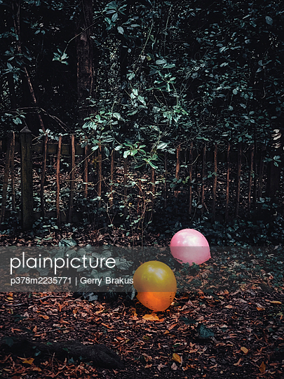 Balloons in woodland - p378m2235771 by Gerry Brakus