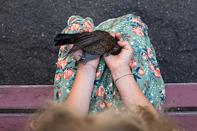 Mädchen hält toten Vogel - p1308m2126760 von felice douglas