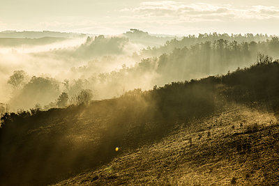 Italy, Tuscany, Val d'Orcia, landscape in morning fog - p300m1206360 by Christina Falkenberg