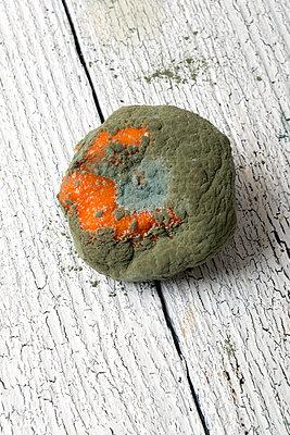 Verschimmelte Mandarine - p451m1093293 von Anja Weber-Decker