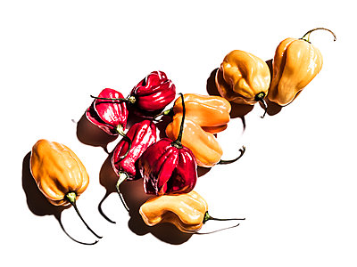 Variety of peppers - p555m1303818 by Manny Rodriguez