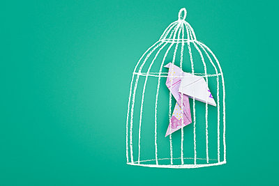 Painted birdcage and banknotes - p715m1196397 by Marina Biederbick