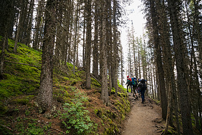 Friends hiking with backpacks on remote trail in woods - p1192m1184074 by Hero Images