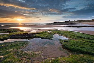 Gorgeous sunrise over Embleton Beach, looking towards Dunstanburgh Castle, Northumberland, England, United Kingdom, Europe - p871m962078 by Adam Burton