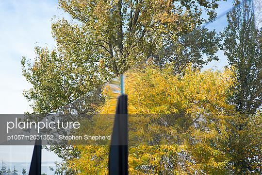 Baum mit Herbstfärbung hinter einer Glasscheibe - p1057m2031352 von Stephen Shepherd