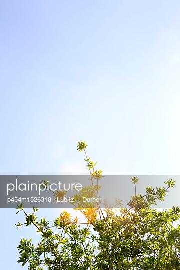 A nice day - p454m1526318 by Lubitz + Dorner
