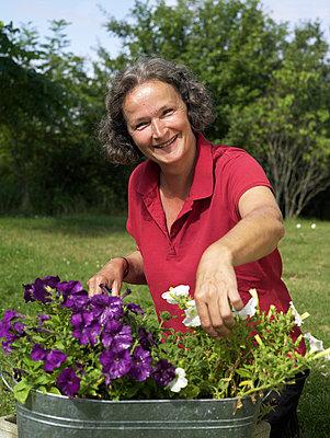 Seniorin bei der Gartenarbeit  - p6430203f von senior images RF
