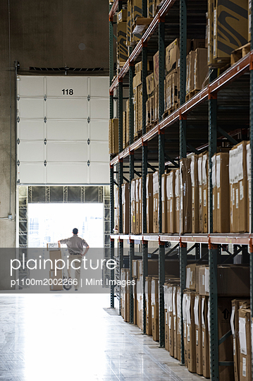 An employee with a hand truck full of boxes standing in a loading dock door in a large distribution warehouse. - p1100m2002266 by Mint Images
