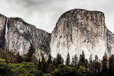 Scenic view of trees growing against rocky mountains, Yosemite National Park, California, USA - p301m1180711 by Patrick Strattner