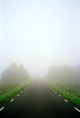 Fog on a country road  Osterlen Skane Sweden. - p5280650 by Dan Lepp