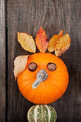 Pumpkin with chestnut eyes - p533m1525225 by Böhm Monika
