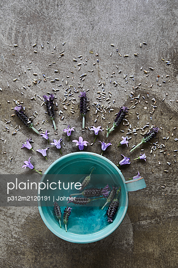 Cap and lavender flowers - p312m2120191 by Johner