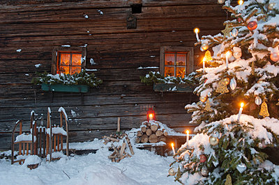 Austria, Salzburg State, Altenmarkt-Zauchensee, facade of wooden cabin with lightened Christmas Tree in the foreground - p300m965157f by Hans Huber