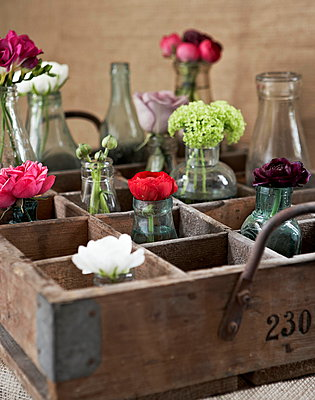Single stem flowers in vases in vintage wooden crate - p349m896275 by Jon Day