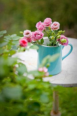 Blumen - p9370111 von Karolina Doleviczenyi