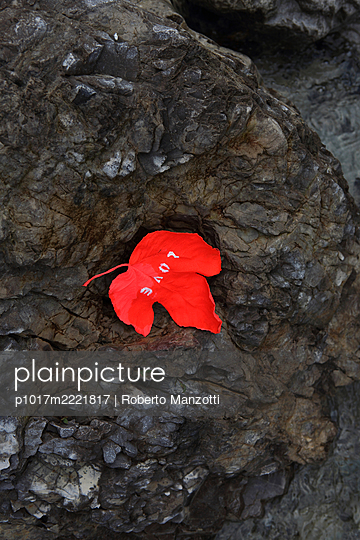 Red leaf with writing love on rock - p1017m2221817 by Roberto Manzotti
