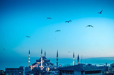 """Türkei, Istanbul, Sultan Ahmed Moschee """"Blaue Moschee"""" - p1085m2203556 von David Carreno Hansen"""